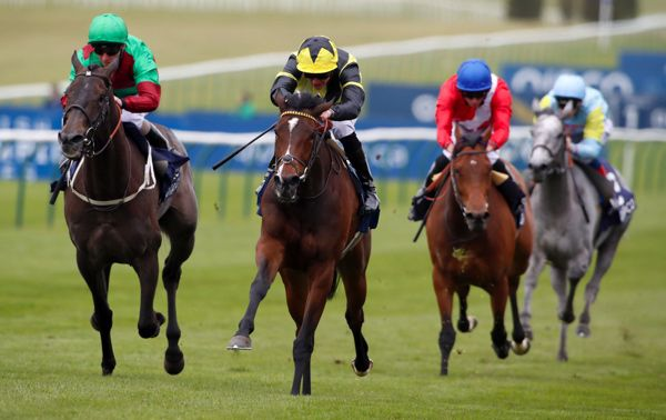 pretty polly stakes betting trends