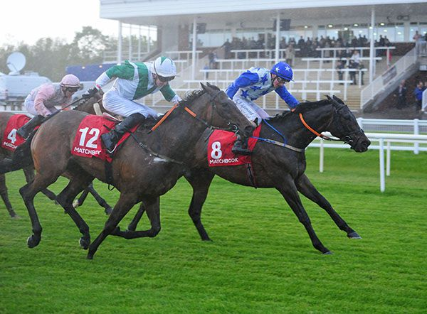 Latest Horse Racing News, Race Results, Race Cards, Race