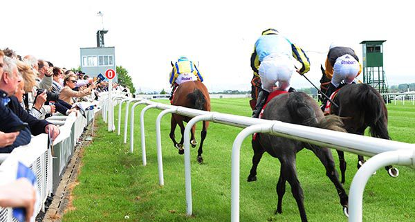irishracing com | News - Baby Power wins on big day for the